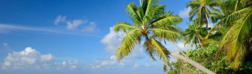 Urlaub mit dem Ex oder stornieren